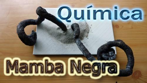 Mamba negra