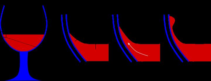 Efecto Marangoni esquema
